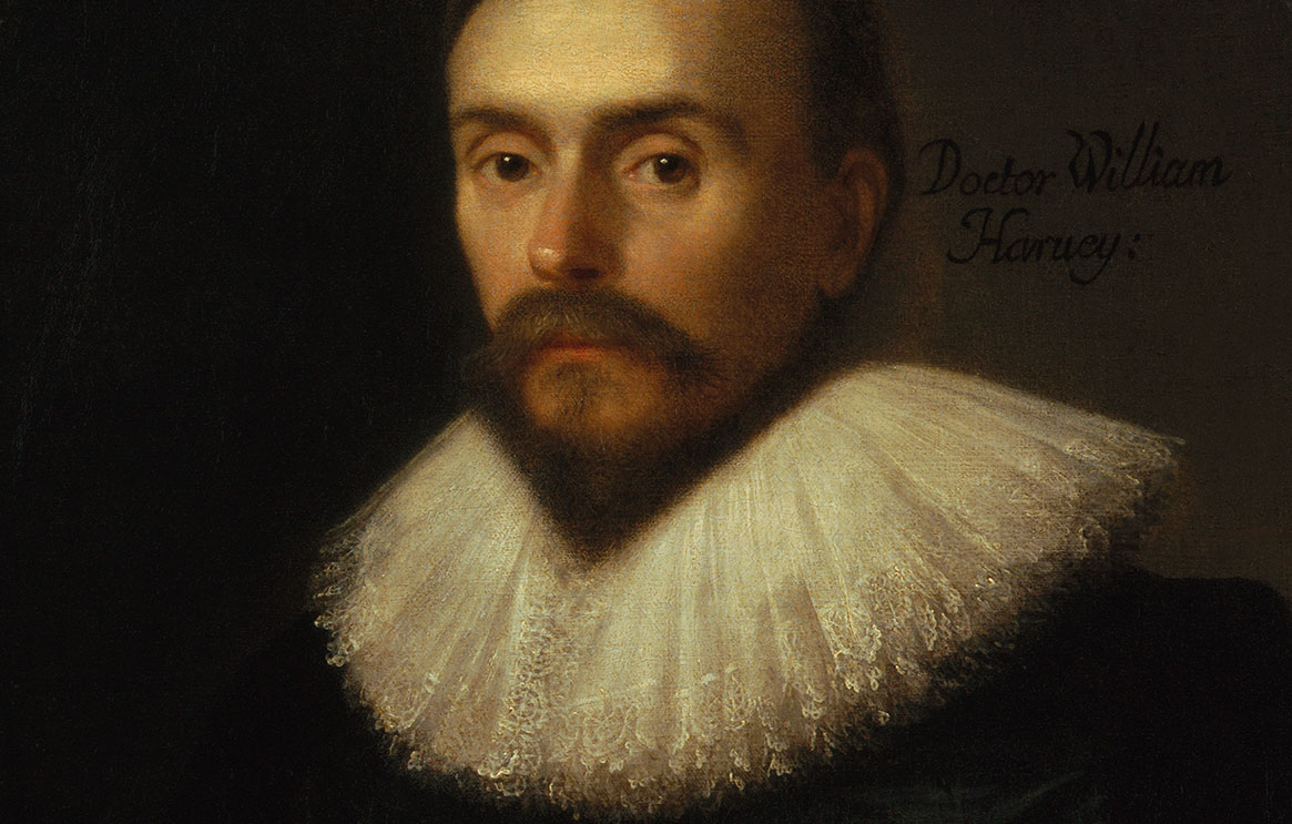 A painting of the face of William Harvey