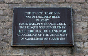 watson and crick dna