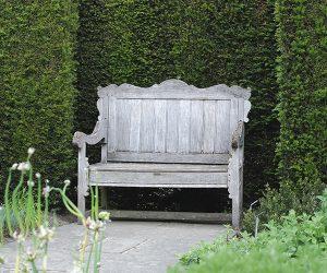Wooden bench in a Kent garden