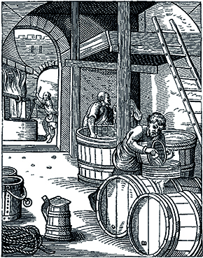 Historical sketch of a ale barrels in a pub basement