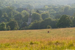 People walking on the grounds of Stanmer Country Park, Brighton. Steeple of Stanmore Church peeking out above trees.