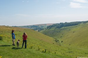 Two women walking a dog and taking in the views at Devil's Dyke overlooking the South Downs.