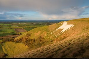 The White Horse historic chalk figure on the downland near Westbury, overlooking Salisbury Plain in Wiltshire.
